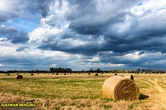 HAY THERE! (The Suss-Man (Mike)) Tags: barnhunt barnhunting georgia georgiabackroads georgiabarnhunters old rural ruralgeorgia sonyilca77m2 sussmanimaging thesussman jeffersoncounty nature sky clouds hay balesofhay bale flat field grass