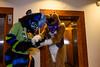 NFC2018-Weekend-105 (Wolfie Fox) Tags: nordicfuzzcon furry convention fursuits sweden stockholm scandic snow nfc2018