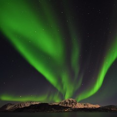 Aurora looking up. (Rudi Verspoor) Tags: aurora northernlights arctic norway lofoten sky night nightsky green water winter february cold stars travel nightshooting vista nikon 1020mm wideangle longexposure d7200