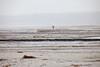 Winter auf dem Darss (Burminordlicht) Tags: darss vorpommern winter winterstimmung ostsee beach balticsea nordstrand nebel nebelstimmung fog foggy landschaft landscape landskap