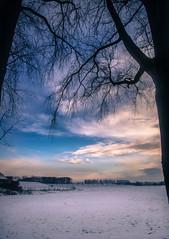 Snow clouds (Ingeborg Ruyken) Tags: ochtend morning dropbox 2017 empel trees bomen 500pxs dawn empelsedijk sneeuw natuurfotografie doornkampsteeg december flickr snow