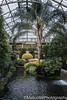 Longwood Gardens (Mellon 99) Tags: mellon99photography lights light longwoodgardens longwood davemellon