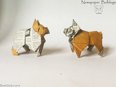 Newspaper  Bulldogs - Barth Dunkan. (Magic Fingaz) Tags: anjing barthdunkan chien chó dog gremlins hond hund köpek origami perro pies пас пес собака หมา 개 犬 狗