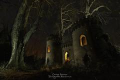 Once upon a time (Carlos Server Photography) Tags: castilo castle tree lightpainting abandoned abandonado longexposure nightscapes nightphotography largaexposición fotografíanocturna canon 1635mm