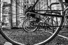 Roues dans roues... / Wheels in wheels... (vedebe) Tags: noiretblanc netb nb bw monochrome roue velo ville street rue city urbain urban ur