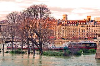134 Paris en Février 2018 - le Square du Vert-Galant à la pointe aval de l'Île de la Cité