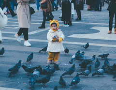 pooh and pigeons. (Nicole Favero) Tags: verde people amazing nikon nikond5000 camera reflex awesome forever cute cool crazy carnival pooh baby boy cuteness graffiti pigeons photography effect vsco lightroom happiness milan lens 50mm focus face portrait stranger