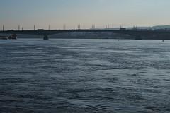 Kennedybrücke Bonn (wani_no_ko) Tags: bonn kennedybrücke bridge river germany deutschland rhein rhine