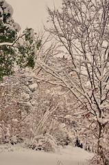 216 Paris en Février 2018 - sous la neige rue Sorbier (paspog) Tags: paris france neige snow schnee février februar february 2018 ruesorbier
