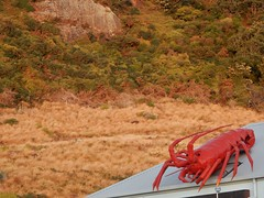 Lobster on Restaurant Roof (mikecogh) Tags: stanley lobster roof promotion novelty advetising
