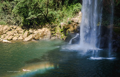 Swimming in the Rainbow (pietkagab (on the road)) Tags: misolha waterfall waterfalls fall cascade cascada rainbow man swimming swimmer nature natural chiapas mexico mexican central america american pietkagab photography pentax piotrgaborek pentaxk5ii travel trip tourism adventure scene tourist attraction outdoors outdoor