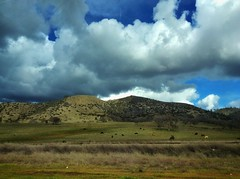 Fun Catching the Sun (lindayaecker) Tags: rollinghills cattle famousmovieset countrysidescene snowclouds rainclouds puffyclouds