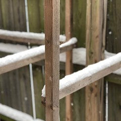 Composition in Wood and Snow #2