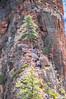Steep Drop (twinblade_sakai340) Tags: adventure angel fun hike hiker hiking landing landscape mountain mountains national nature outdoor outdoors park slot utah wall zion