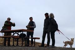 IMG_0304 (ElaineK) Tags: fortordguidottigoattrailloop fortord hikecalifornialandscapetrailhiking hikers dog bench outdoors