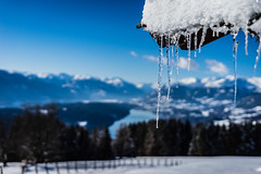 trng-4884 (juliantronegger) Tags: glanz millstättersee winter eis lake see