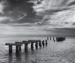 Abandoned pier (Tim Ravenscroft) Tags: pier abandoned bocagrande florida monochrome blackwhite blackandwhite hasselblad hasselbladx1d x1d