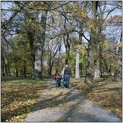 Late Autumn (Koprek) Tags: rolleiflex 28f kodak portra 160 film čakovec croatia medium november 2017 autumn