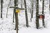 The Guide (a7m2) Tags: parapluiberg höllenstein weitwanderweg perchtoldsdorf mödling loweraustria wandern hike mountainbike föhrenberge naturschutzgebiet faun flora