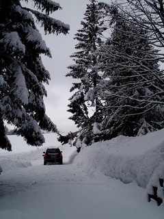 Pictures with winter theme 001