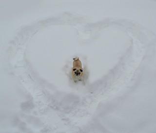 My Snowy Valentine!