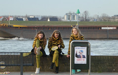 carnival costume bees by the river (treenquick) Tags: costumes bees couple river zaltbommel carnival girls