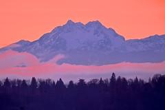Olympic Sunset (Aurora Santiago Photography) Tags: sunset seattle olympics