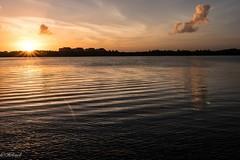 Les ondes vont jusqu a vous (Hélène Baudart) Tags: lumixgx8 cabcun mexique soleil mer ondes coucherdesoleil