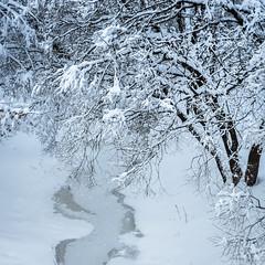Зимняя река / Winter River (Yuri Balanov) Tags: river forest winter ice russia pentax pentaxk5iis color snowfall