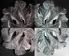 leaf quadriptych (marianna_a.) Tags: leaf dry weathered costarica macro mariannaarmata