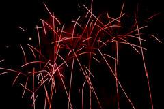 Winterleuchten 14 (Gi123456789****) Tags: nacht dortmund winterleuchten feuerwerk westfalenpark