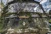 Estafette (sebastienloppin) Tags: vehicle vehicule estafette renault camion car motor decay urbex abandoned garage canon 6dmarkii samyang 14mm f28 hdr hdri photomatix paysage arbre pelouse