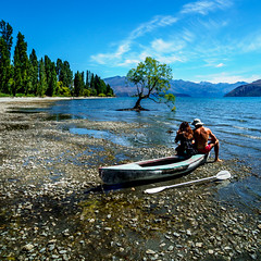IBM were up 2 points today... maybe we can stay another week.. (Explored) (Geoff Eccles) Tags: lake newzealand tree wanaka beach boat canoe clouds lakeside mountains oars paddles pebbles stones sunny