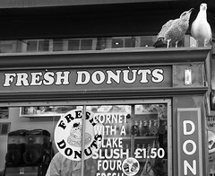 Give Me Some Sugar, Sugar (tcees) Tags: paradisest liverpool x100 fujifilm finepix bw mono monochrome blackandwhite outdoor urban streetphotography street daytime donuts icecream takeaway stall food pigeons sign cornet slush seagull man