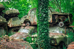 Busy Parking Lot (MGness / urbexery.com) Tags: lost place places abandoned abandone abandones exploration decay decayed car lostcar urbex urban urbexery rockandroll black death christine boyfriend urbanexploration rusty cargraveyard eye oldtimer wood forest wald nature