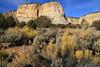 Sage and Sandstone (arbyreed) Tags: arbyreed rock sandstone navajosandstone glencanyongroup grandstaircaseescalante landscape sedimantaryrock petrifiedsanddunes sage rabbitbrush kanecountyutah johnsoncanyon