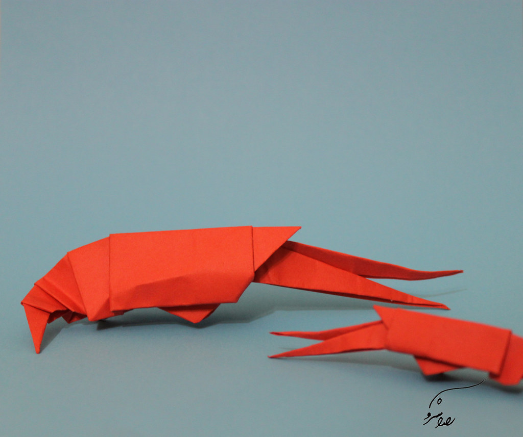 14 Shrimp Sarvireza Tags Origami