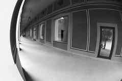 (Px4u by Team Cu29) Tags: weitwinkel fischauge hofgarten münchen fenster türen säulen gang
