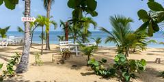 orientation guide (rey perezoso) Tags: 2016 samaná caribbean mar beach playa quisqueya hispaniola republicadominicana lasterrenas palmtree palma caribe bottle bench sign