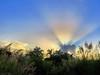 Sunrise 20180211 (Kenneth Cole Schneider) Tags: florida miramar westmiramarwca