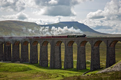 The Flying Scotsman crosses the Ribblehead Viaduct (TheSpur8) Tags: yorkshiredales 2017 date bridge scenery flyingscotsman steam cumbria trains places ribbleheadviaduct skarbinski transport
