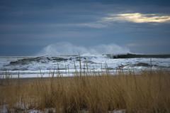 A Windy Day (Bud in Wells, Maine) Tags: wellsbeach surf winter dunegrass dof cloudy coastal newengland wells maine