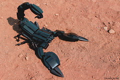 When it comes to Scorpions, the bigger the better. (Takamichi Irie) Tags: lego scorpion moc animal desert