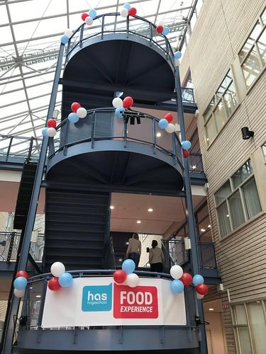Ballontoeven HAS Hoge School 's Hertogenbosch