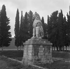 Ο Λέων της Χαιρωνείας. (Giannis Giannakitsas) Tags: greece grece griechenland χαιρωνεια chaironia charonea