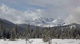 Kuna Crest / Yosemite National Park