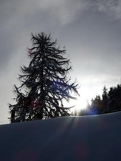 Carnet d'hiver 46