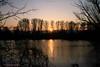Sonnenuntergang - Sunset (Noodles Photo) Tags: sunset sonnenuntergang urdenbacherkämpe baumbergeraue altrhein rhein rheinland düsseldorf urdenbach monheimamrhein baumberg northrhinewestphalia nordrheinwestfalen deutschland germany canoneos7d ef24105mmf4lisusm dämmerung himmel