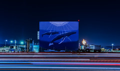 save our water and whales (pbo31) Tags: livermore california eastbay alamedacounty nikon d810 color black dark night boury pbo31 lightstream motion traffic roadway whales art mural darren greenwood watertreatment plant industrial giant ocean blue 2018 winter isabel