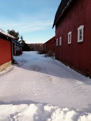 Blue sky (Aunt Owwee) Tags: 365the2018edition 3652018 day17365 17jan18 barns chickencoop red blue white